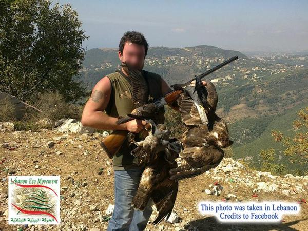 2.6 million birds illegally killed in Lebanon every year.