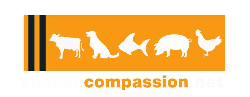 choose compassion logo